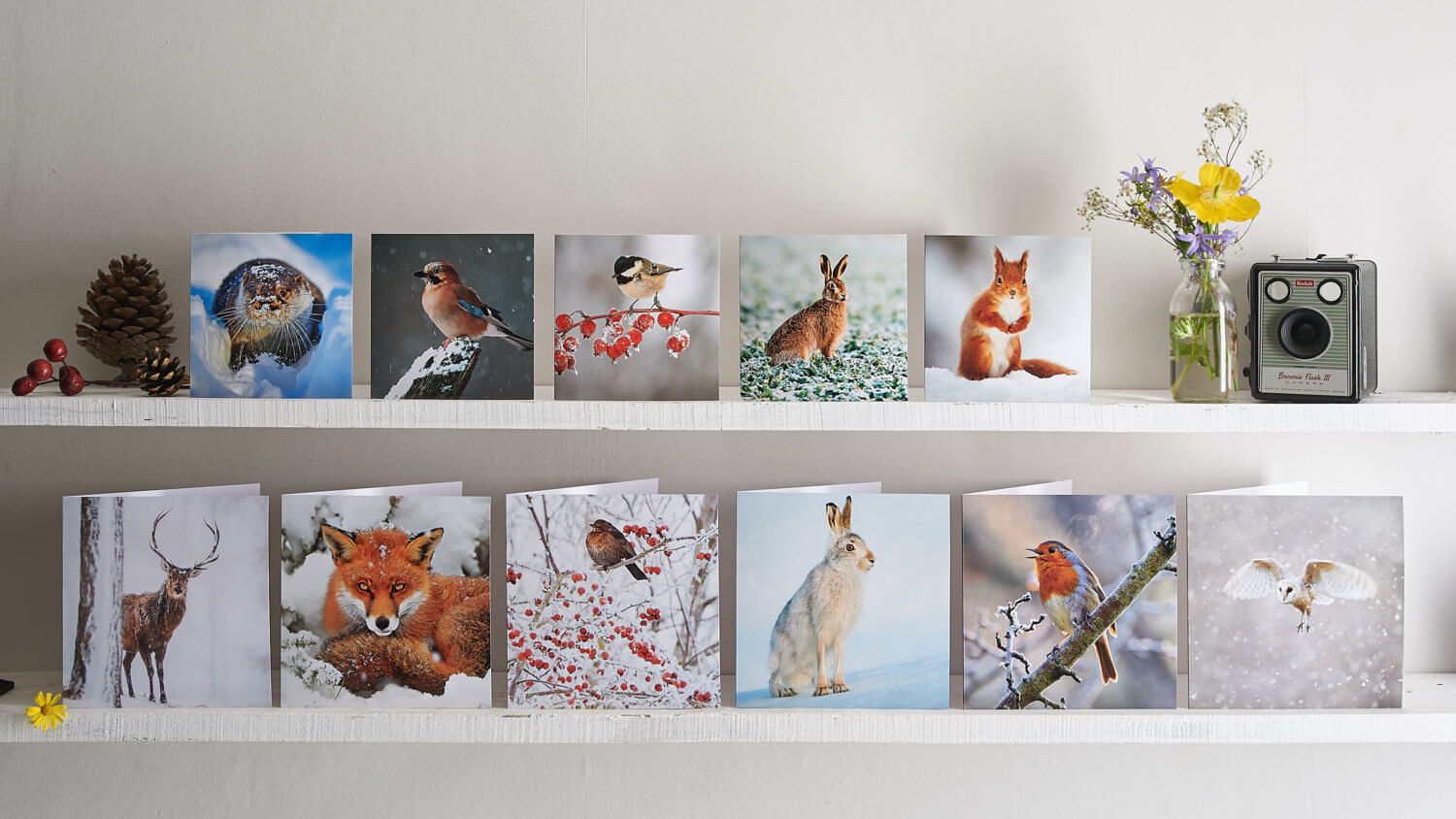 Yorkshire Wildlife Trust group greetings card photography