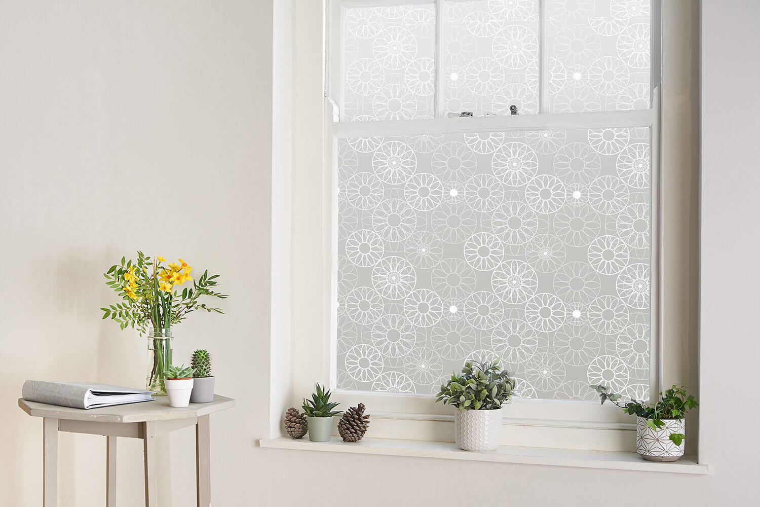 The Window Film Co and Helen Russell Creations window film designs photographed in the studio
