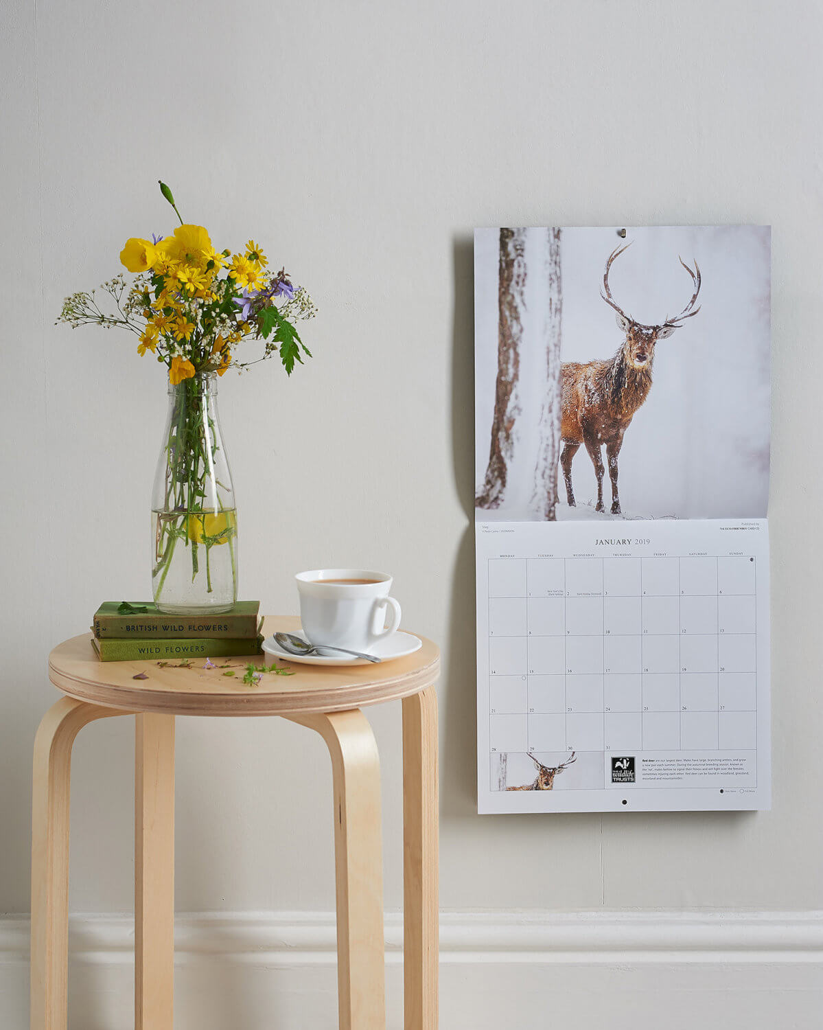 Yorkshire Wildlife Trust calendar shot in a simple setting with wildflowers and observer books as props