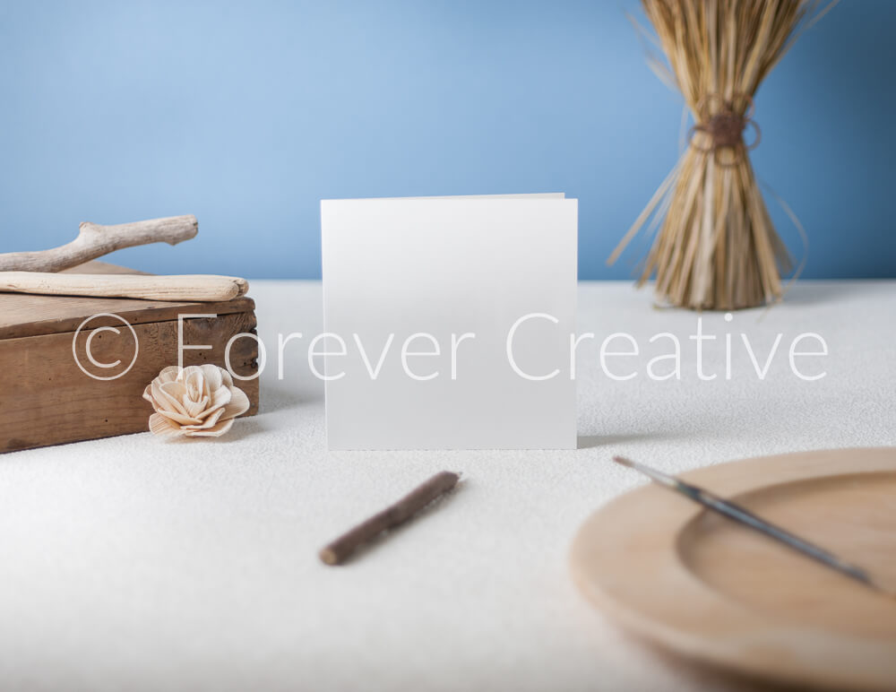 Greetings card stock photography with nature inspired props
