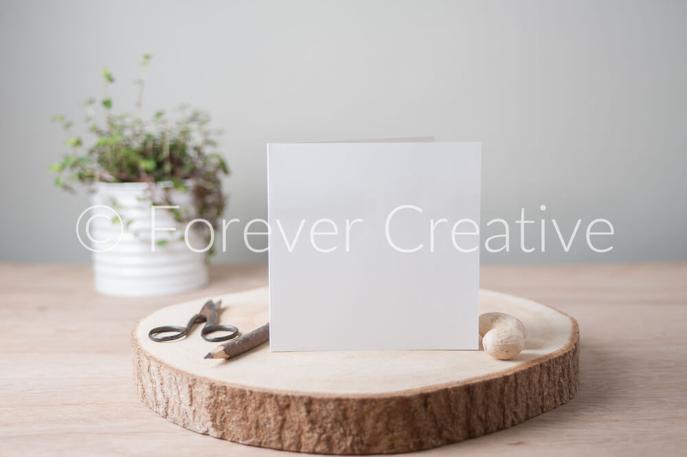 Nature inspired stock photograph of a greetings card