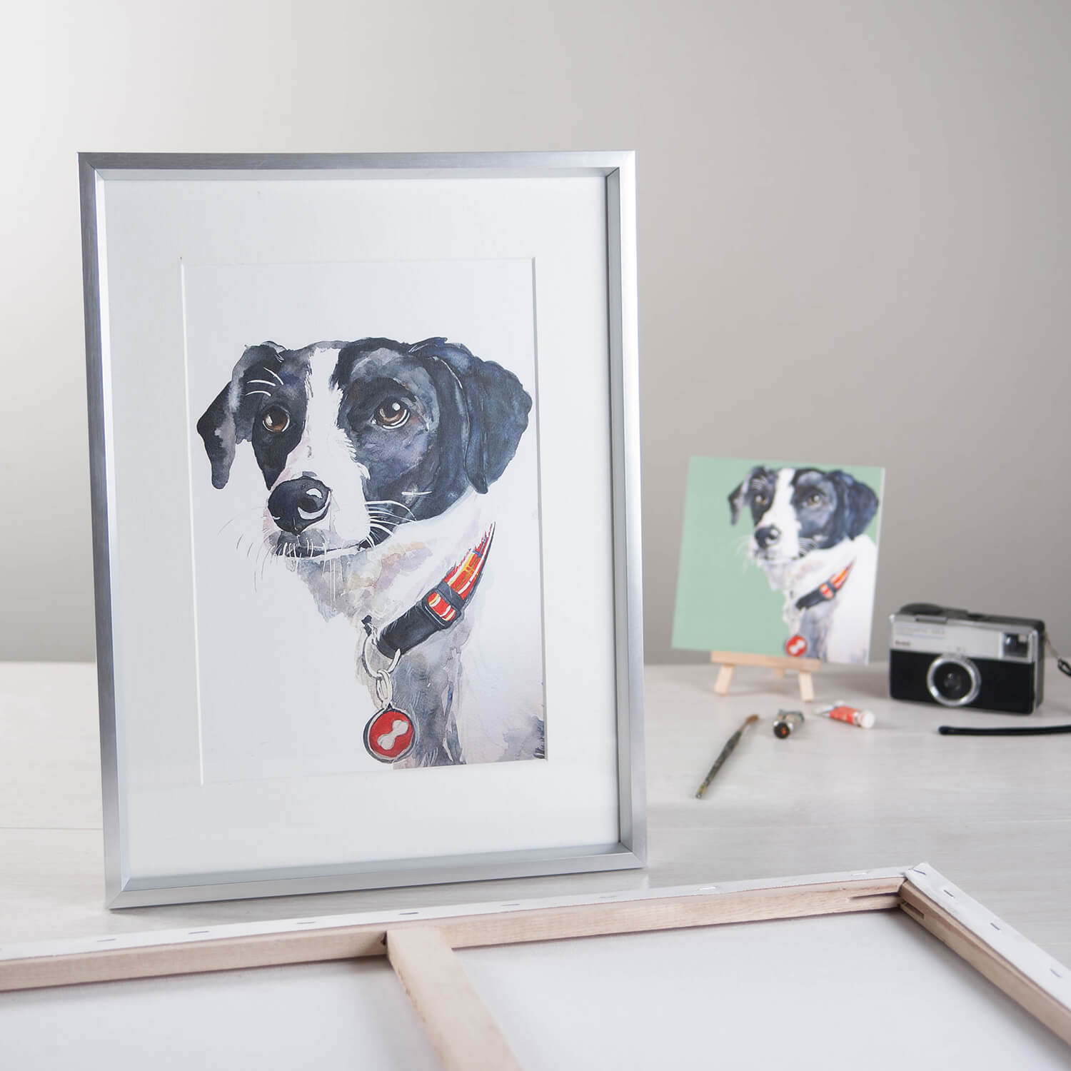 Jo Scott Art pet portraits photographed in the studio with vintage camera and props